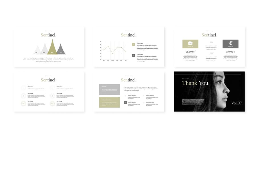 Sentinel - Powerpoint Template - 2