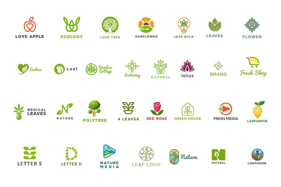 30 Nature Logo Kit - 1