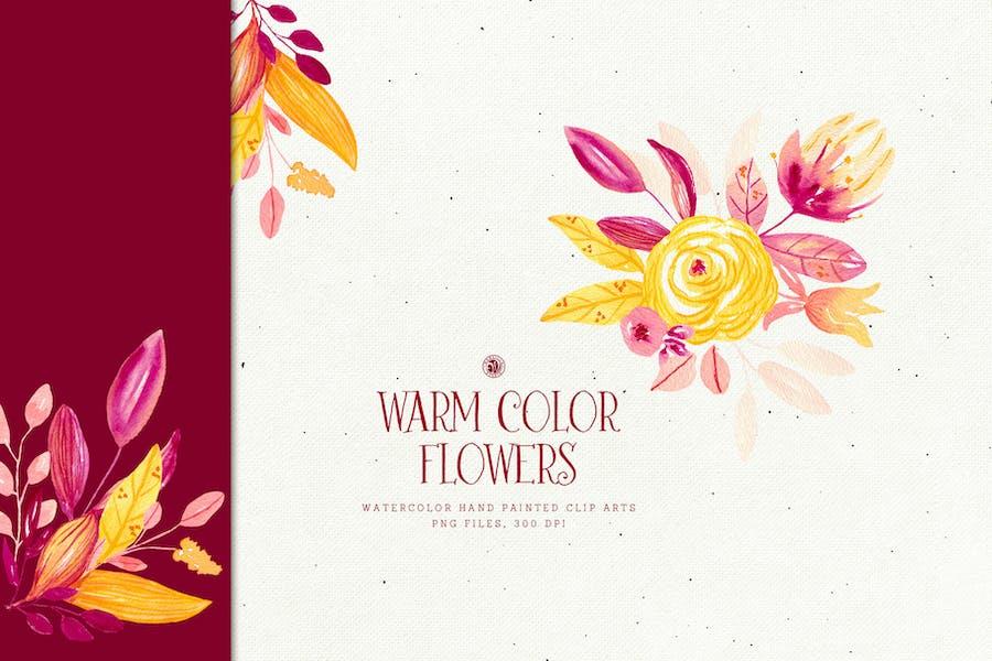 Warm Color Flowers - 0