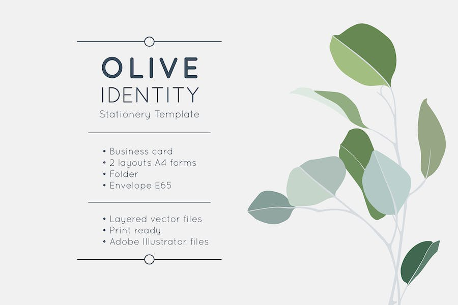 Olive Identity Stationery Template - 0