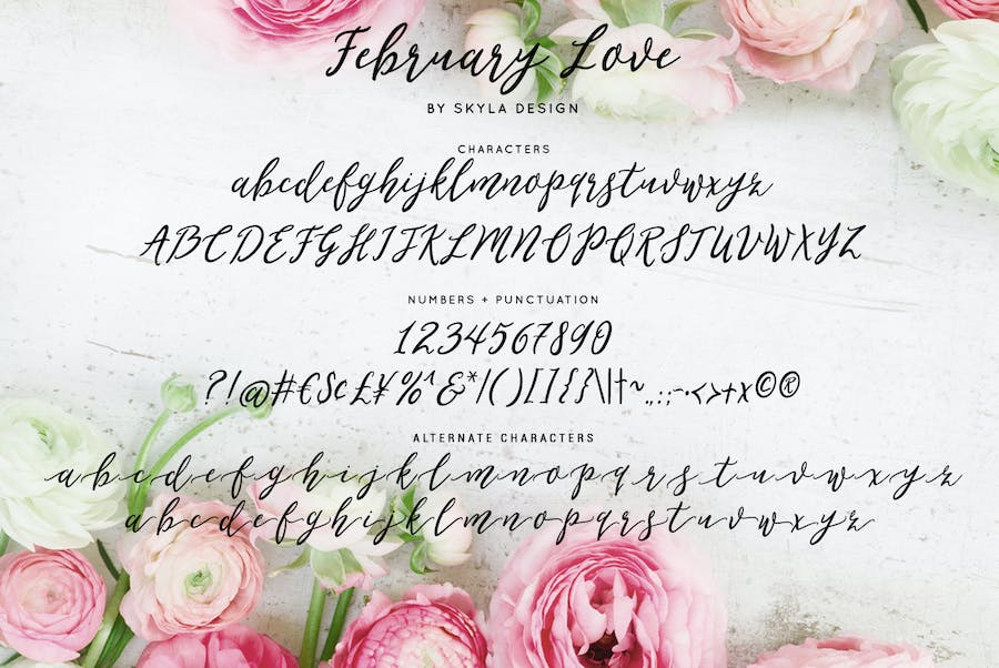 Flirty feminine font, February Love - 3