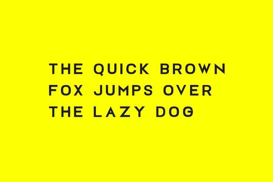 FOSLIN - Minimal Sans-Serif / Display Typeface - 2