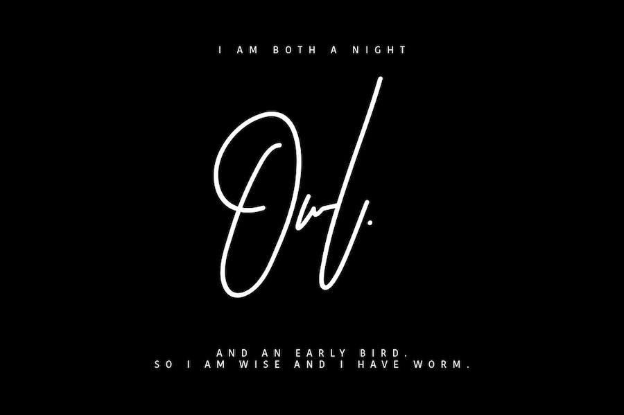 Astronout Signature Typeface - 2
