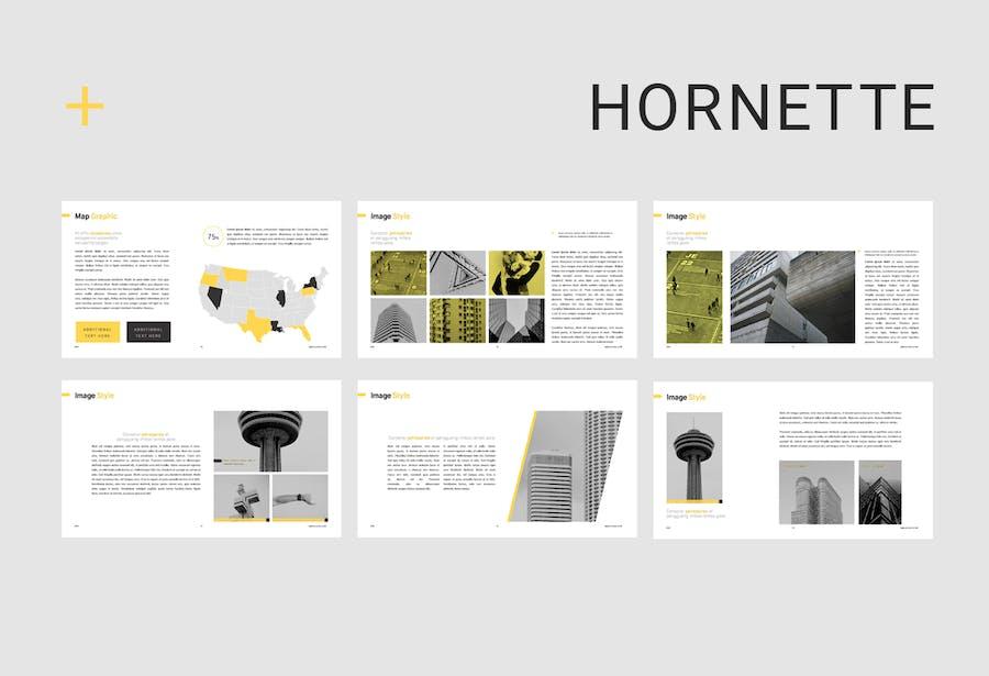 Hornette Powerpoint - 3