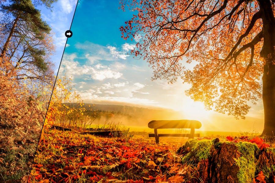 Romantic Autumn Lightroom Presets - 3