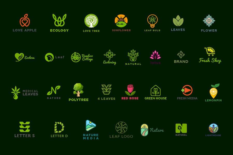 30 Nature Logo Kit - 2