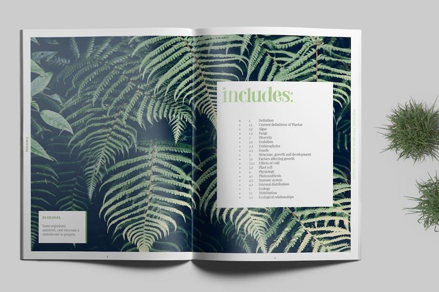 Botanica - Portfolio / Photobook / Brochure - 1
