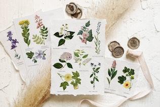 Beautiful retro flowers - illustrations set - 0
